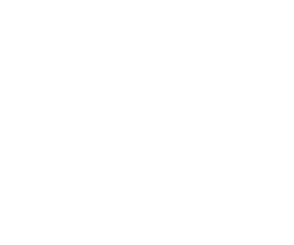 Year-Round Releases