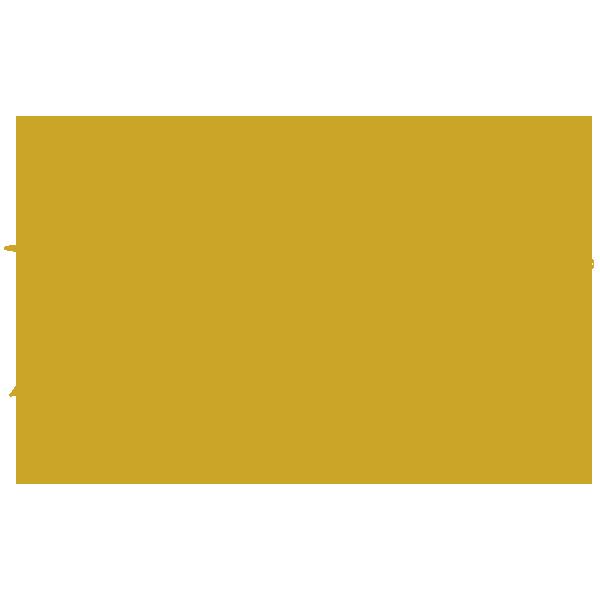 Stone Ruination Double IPA 2.0