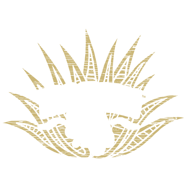 Xocoveza Extra Añejo