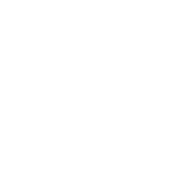 Stone Mission Warehouse Sour - Apricot