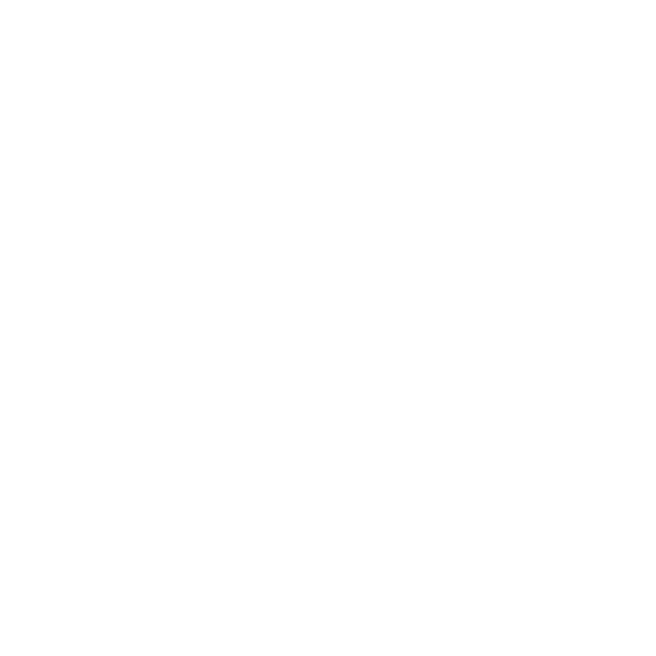Stone Mission Warehouse Sour - Mosaic Wild Ale